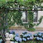 McAlpine Journal: Garden Design